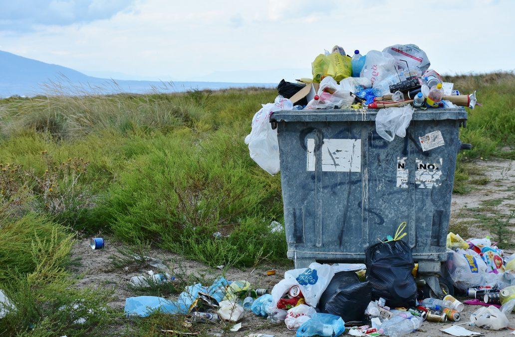 """Andreas Rimkus MdB & Ratsherr Philipp Tacer: """"Es ist an der Zeit für ein gesetzliches Verbot von Plastiktüten!"""""""