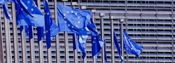 Appell: Unser föderales Europa:souverän und demokratisch